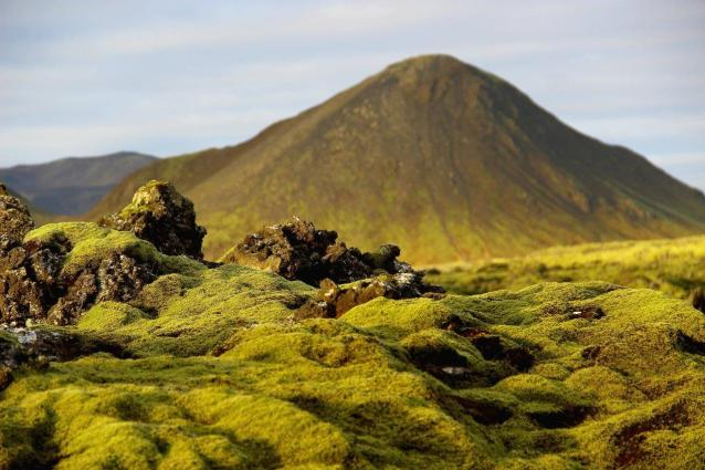 Island Lavafelder Reykjanes