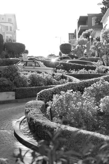Lombard Street IV