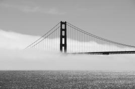 Golden Gate im Nebel V