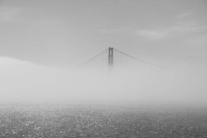 Golden Gate im Nebel VI