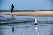 Strandspaziergänger