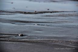 Schöne Stille am Strand