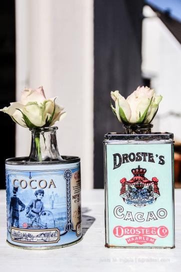 Rose zum Kakao