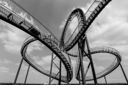 Tiger and Turtle - Looping XL