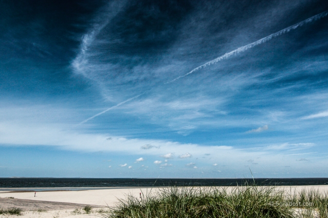 Texel-Nordsee_MG_6390-2