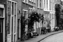 Charmantes Leiden