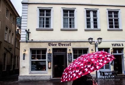 Farbtupfer im Regen