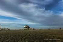 Paradies für Strandläufer