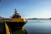 Das knallgelbe Pilotboot