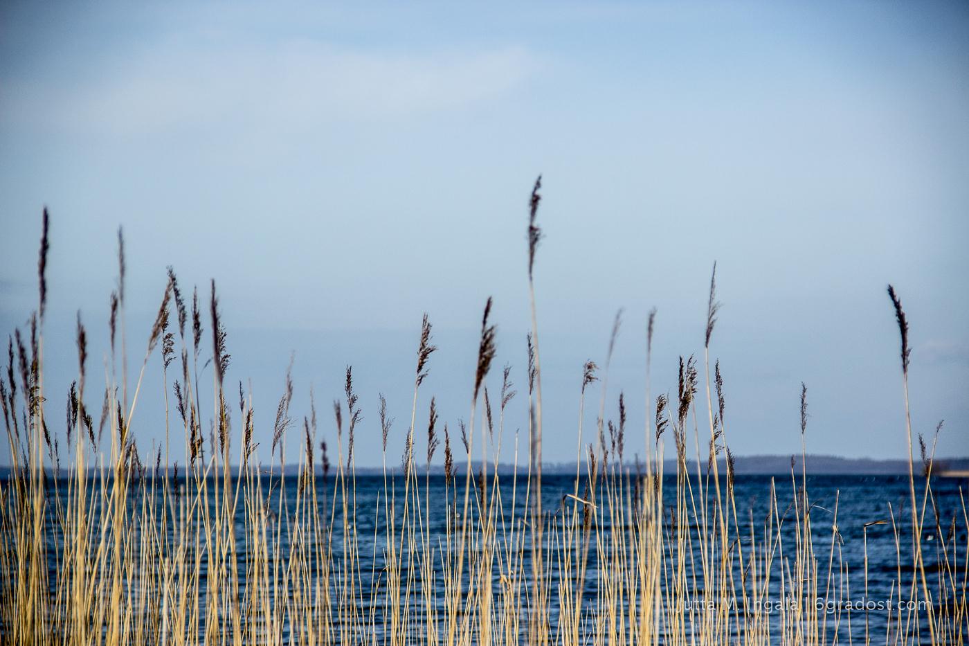 Reich an Saibling: der Selenter See