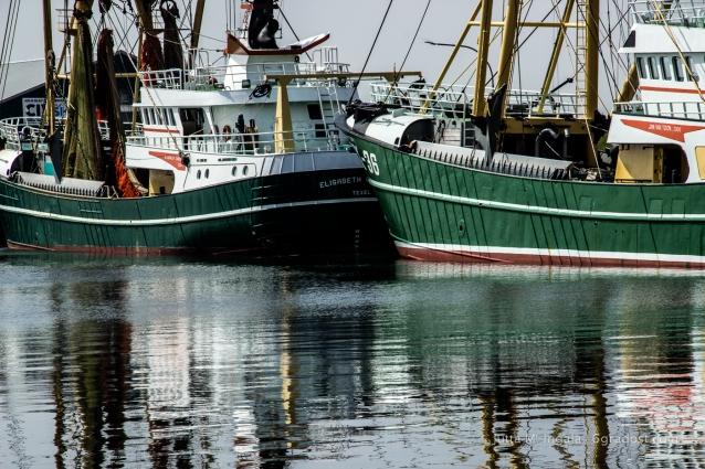 Niederlande-Texel-Oudeschild-Hafen_MG_1098