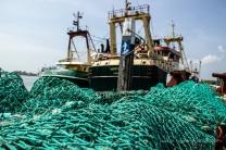 Manchem Fischer geht Strandgut ins Netz