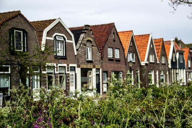 Niederlande-Texel-Oudeschild_MG_0777