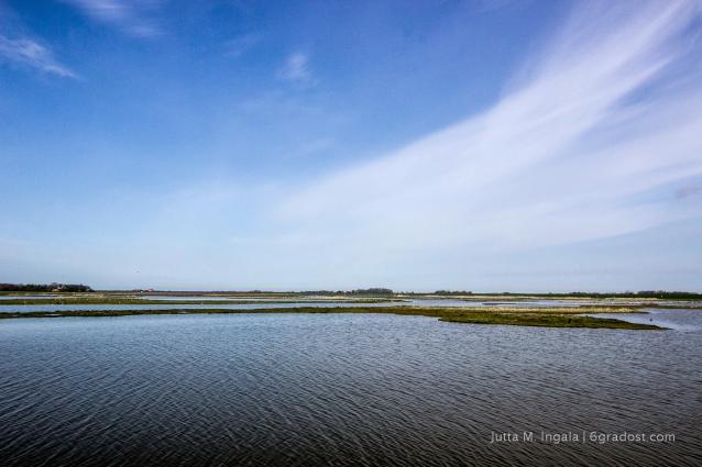 Niederlande-Texel-Utopia_MG_1016