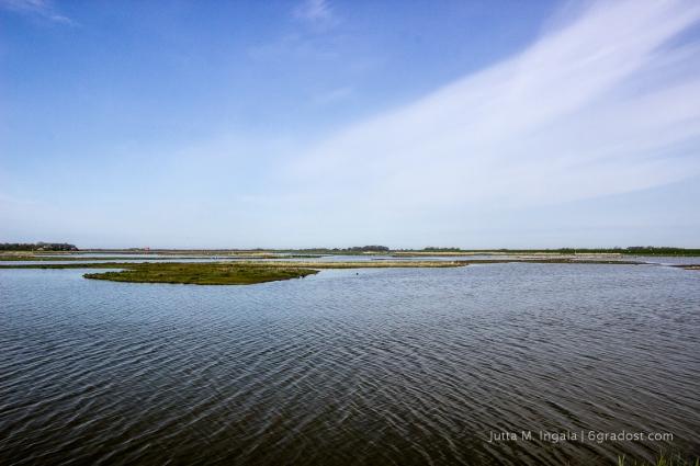 Niederlande-Texel-Utopia_MG_1017