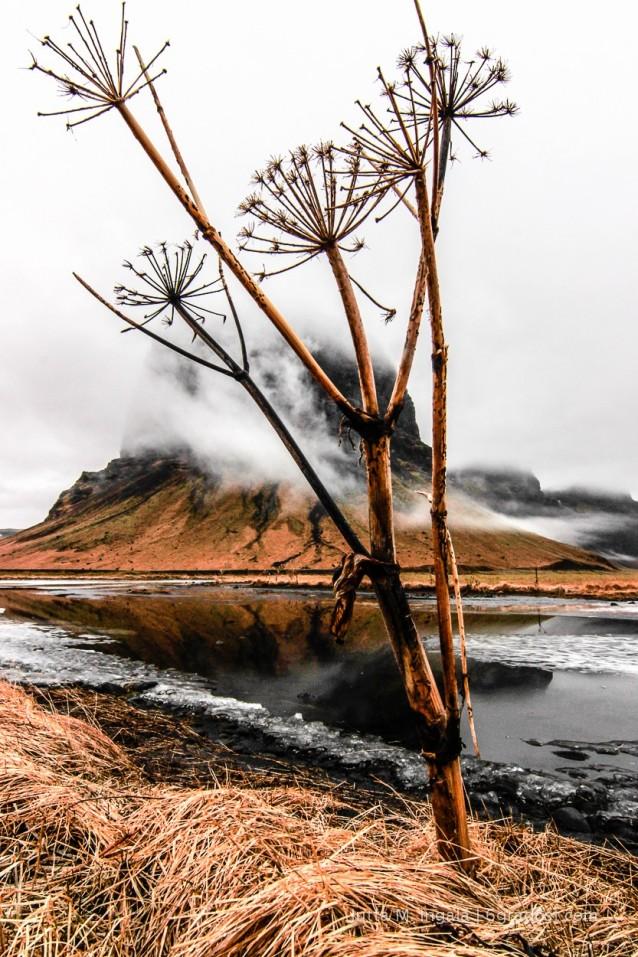 6GradOst_Island_Lopapeysa_Landschaft_1
