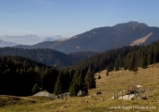 Trentino_6GradOst_8819