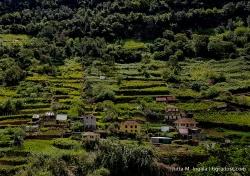 Madeira_6GradOst_JuttaIngala_11