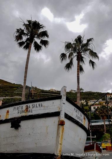 Madeira_6GradOst_JuttaIngala_39