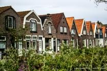 Jutta_Ingala_Niederlande_Texel_MG_0777