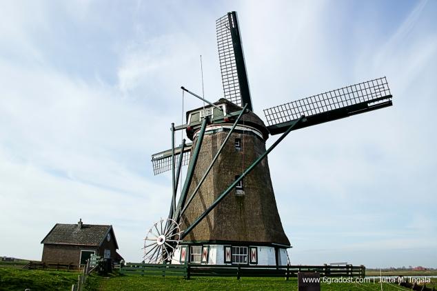 Jutta_Ingala_Niederlande_Texel_MG_0991