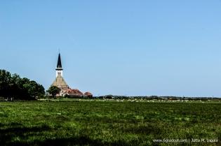 Jutta_Ingala_Niederlande_Texel_MG_6219