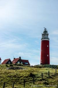Jutta_Ingala_Niederlande_Texel_MG_6409