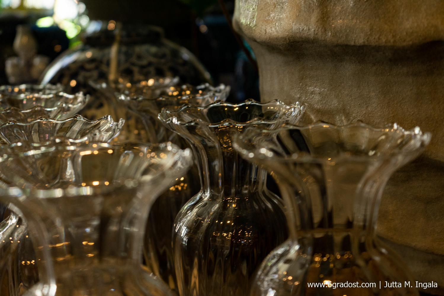 Filigrane Glasvasen warten auf Liebhaberinnen bei Horta Bloembinders