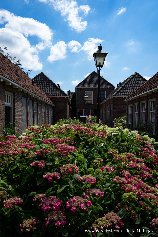 Verborgene Innenhöfe und Oasen der Ruhe: Hofjes